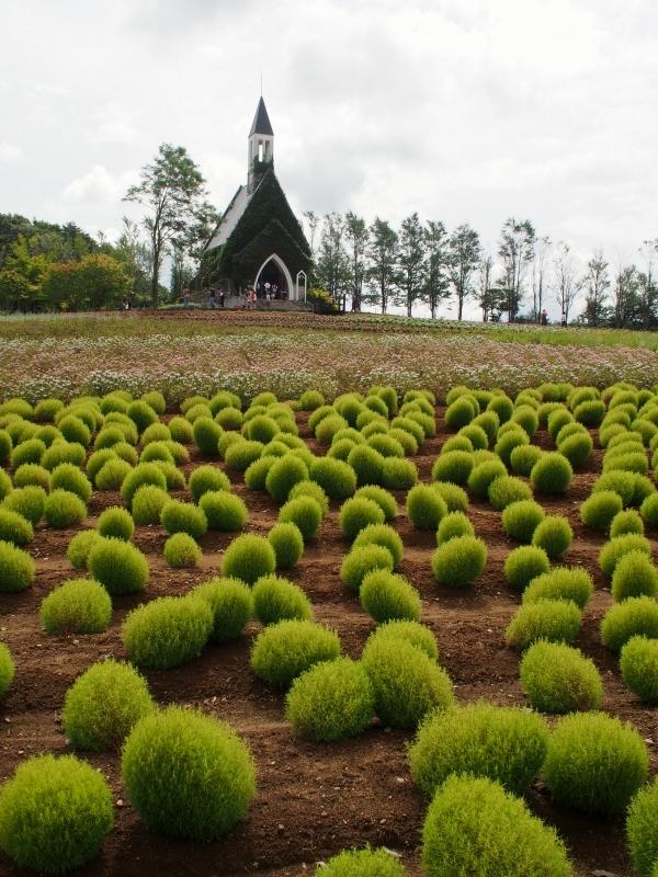 ひるがの高原 牧歌の里 花の教会