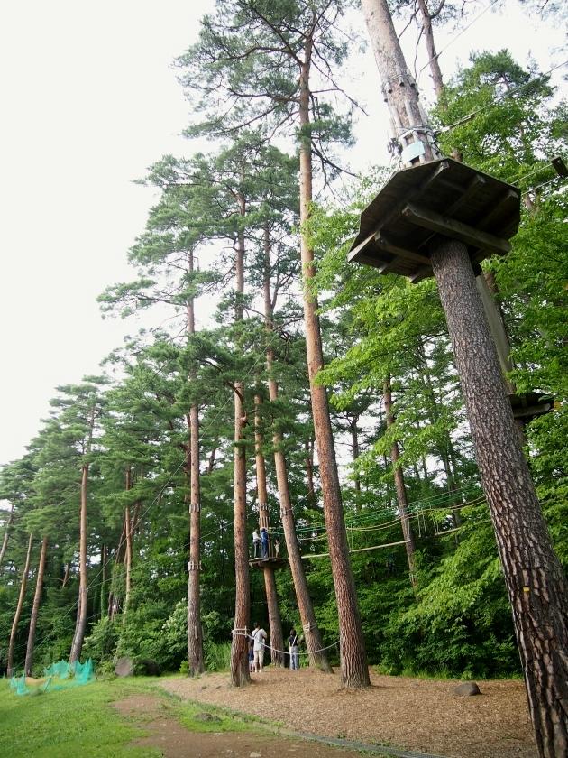 リゾナーレ八ヶ岳 森の空中散歩 1