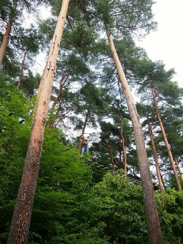 リゾナーレ八ヶ岳 森の空中散歩 3
