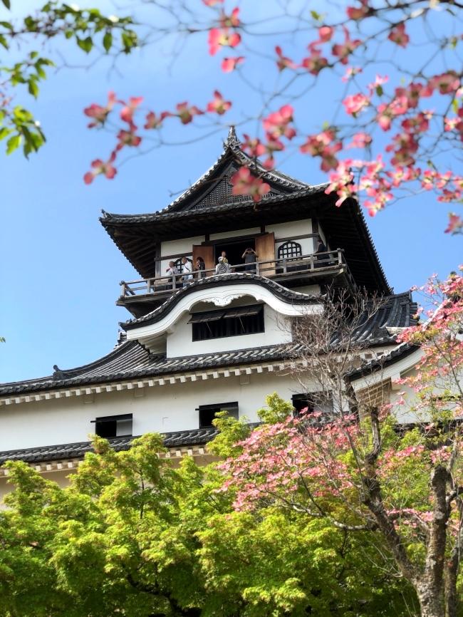 犬山城 ズーム