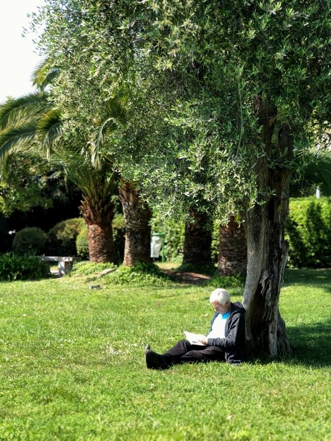 シャガール美術館 庭