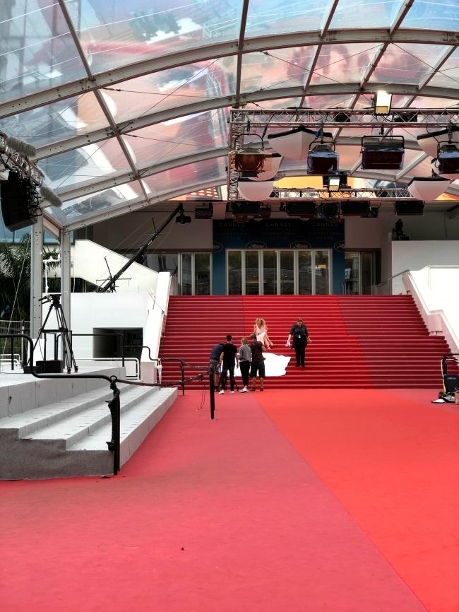 カンヌ国際映画祭 レッドカーペット