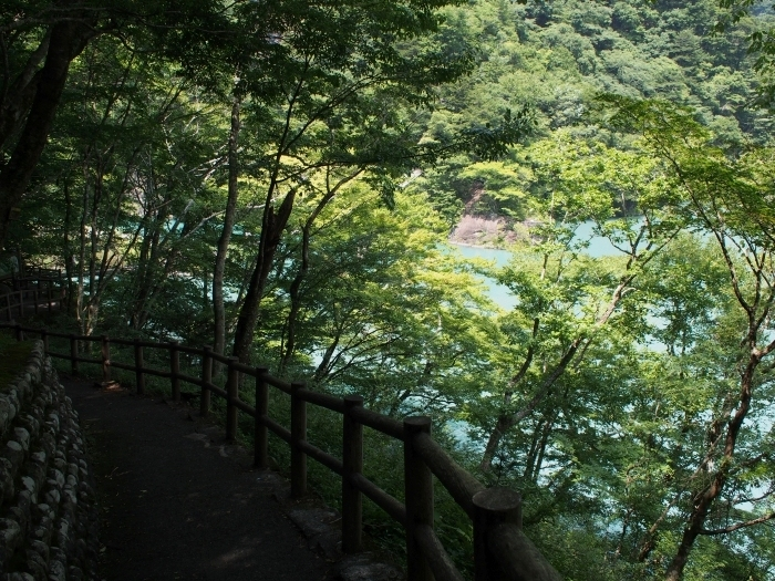 綺麗なダム湖が見えてきた