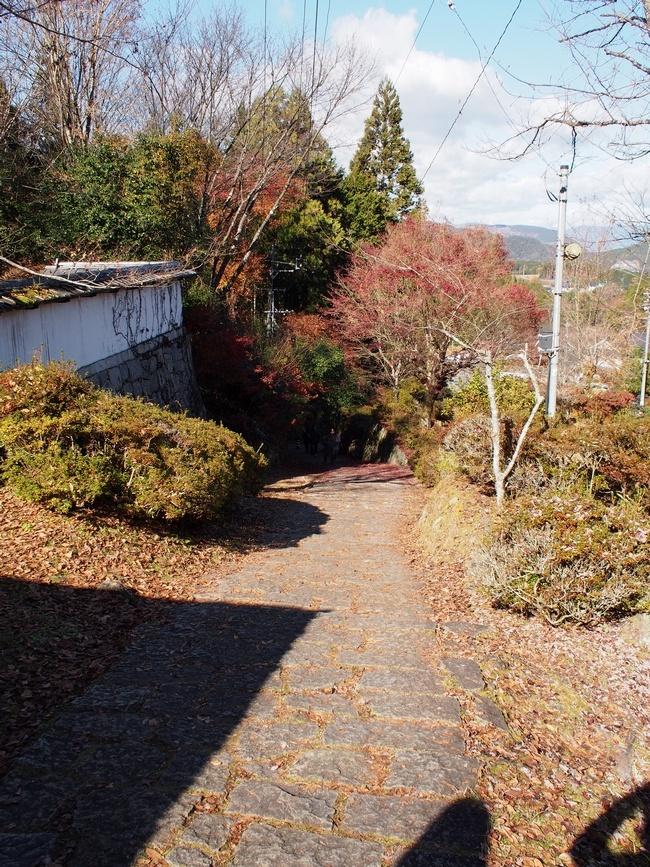 下田歌子勉学所の前の道