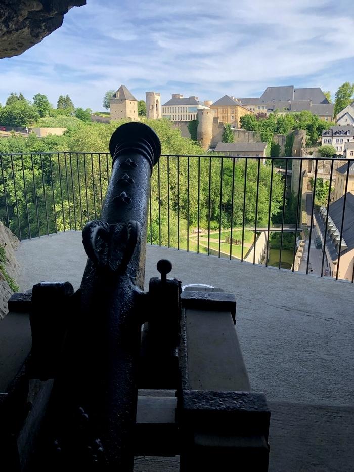 ボックの砲台 大砲