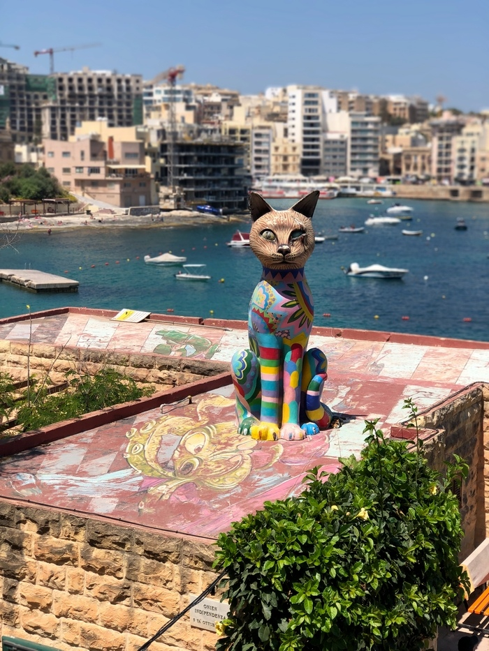 Exiles Bay(エキシルズ湾) 猫の像2 マルタ旅行最終日