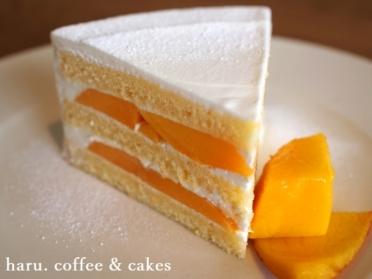 haru.coffee&cakes アイキャッチ