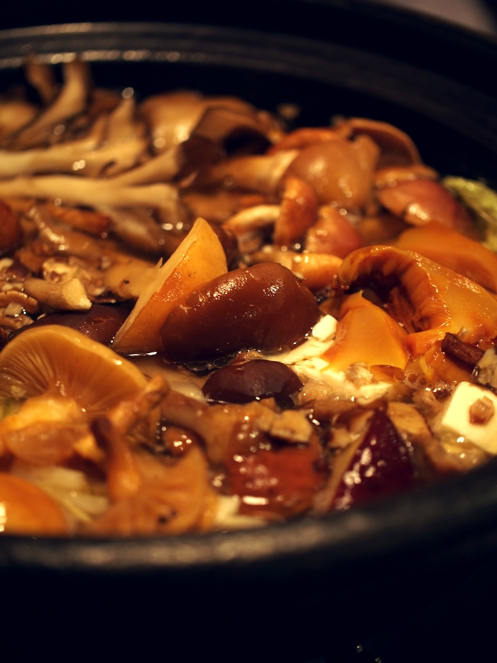 鹿教湯温泉三水館 天然きのこ鍋